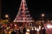 Encendamos junto el Árbol de Navidad